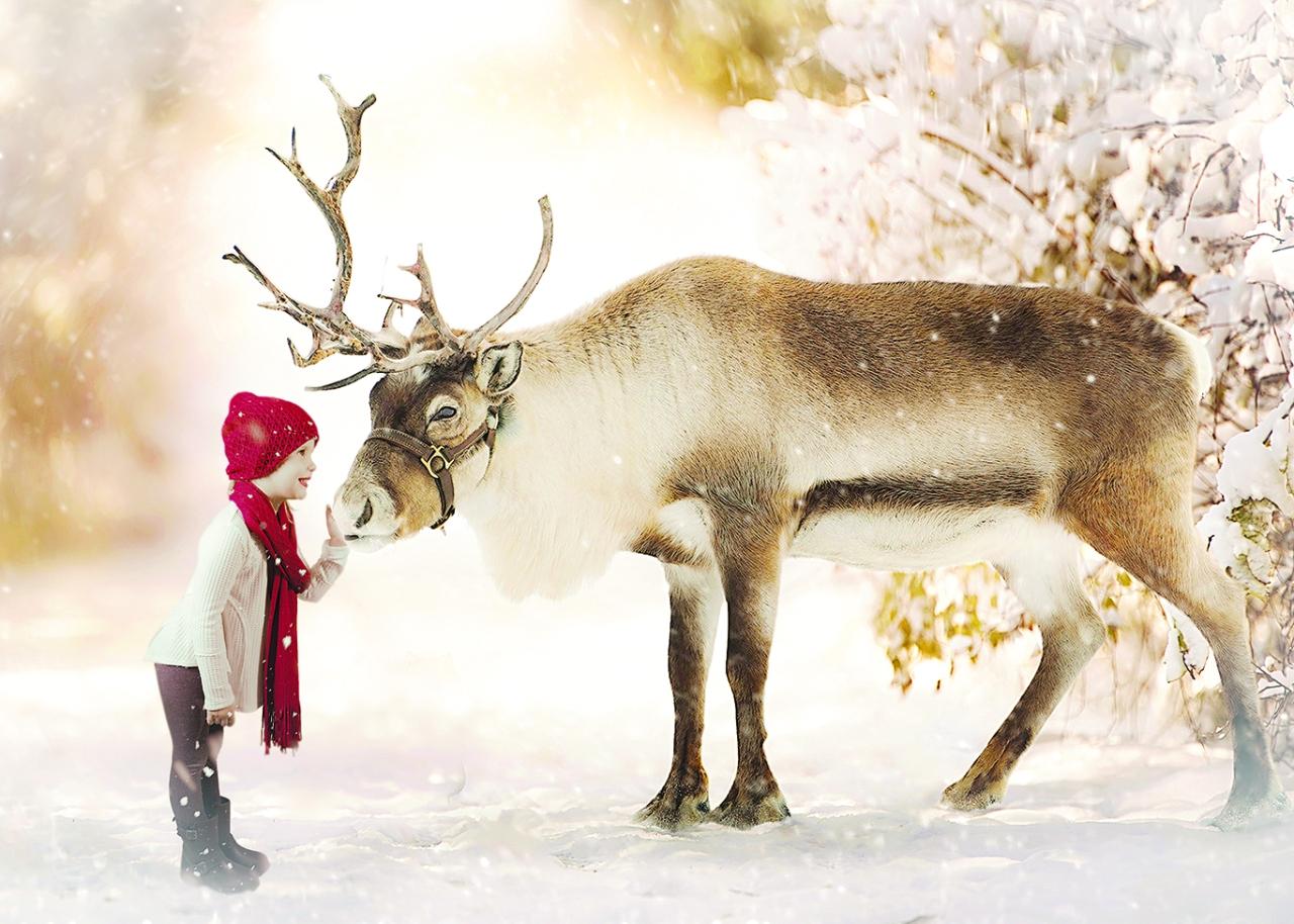ReindeerJordyn2a-WEB